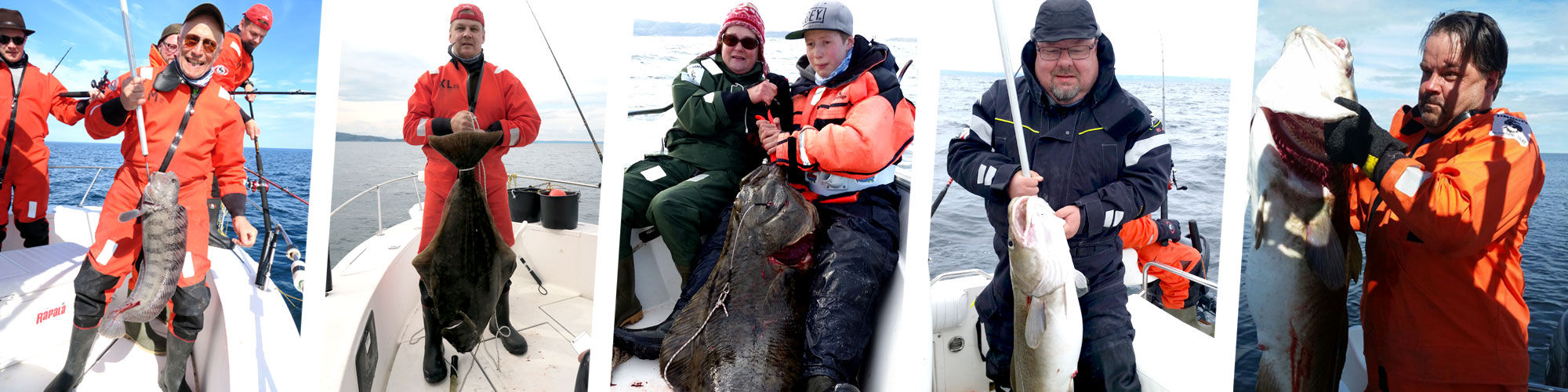 Jäämeren kalastus